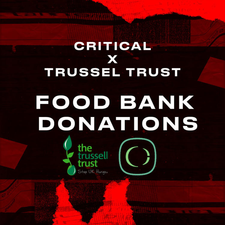 Critical Sound Foodbank Donations